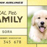 JALペットファミリーとは!?JAL搭乗でペット(犬、猫)もマイルをためられるサービスが開始!