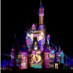 Celebrate! Tokyo Disneyland(東京ディズニーランド)はマジですごかった!驚きの内容と注意点をご紹介